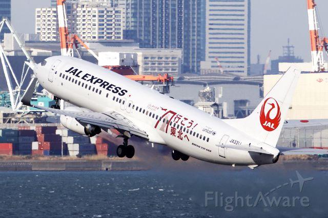 Boeing 737-800 (JA331J)