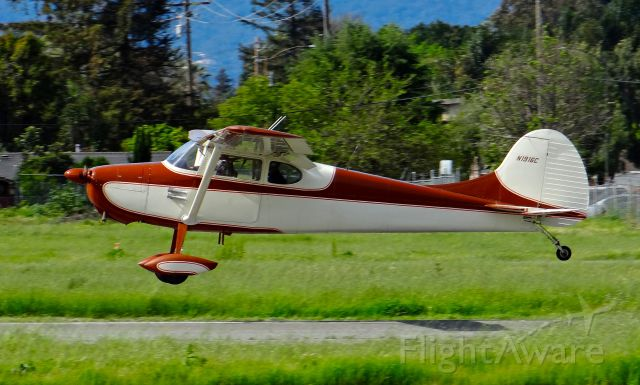 Cessna 170 (N1916C) - Locally-based Cessna 170 moments before touchdown at Reid Hillview.