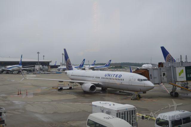 Boeing 737-800 (N33294)