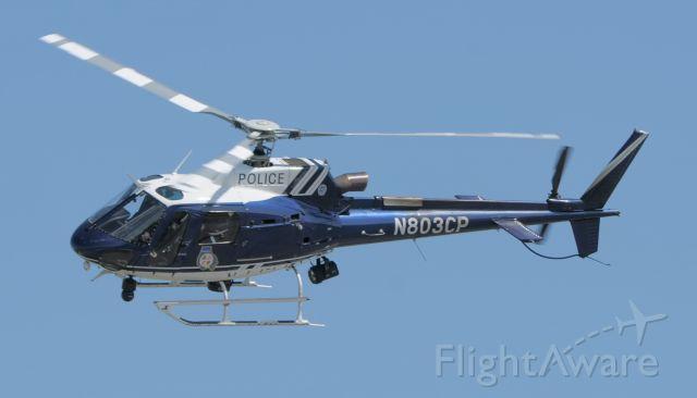 N803CP — - On patrol.