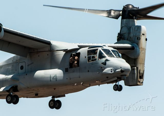 Bell V-22 Osprey (VMM365) - It landed right in front of me. Wonderful to see.