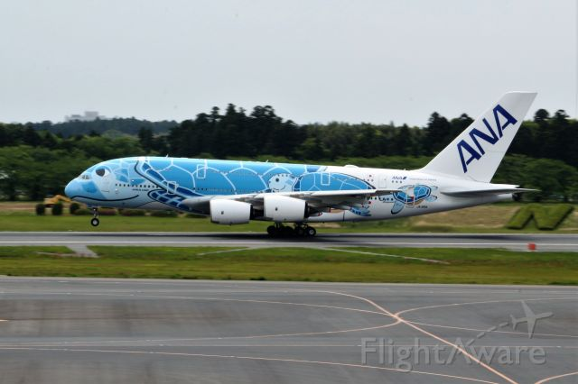 Airbus A380-800 (JA381A)