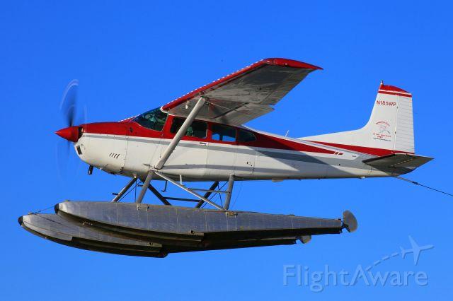 Cessna Skywagon (N185WP)
