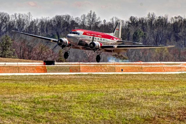 Douglas DC-3 (N143D) - A Herpa DC-3 makes a perfect one-point landing.