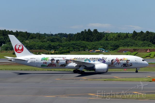 Boeing 787-9 Dreamliner (JA873J) - Tokyo-Narita(NRT) 2019/06/16