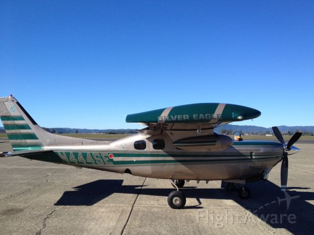 Cessna P210 Pressurized Centurion (N444SE) - Waiting or rescue dogs to arrive