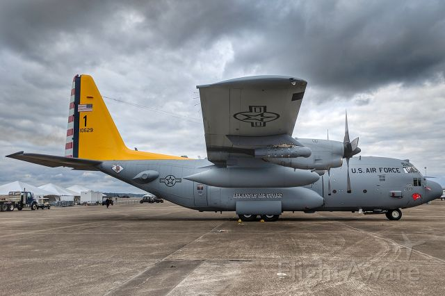 Lockheed C-130 Hercules (81-0629) - 154th TRS/189th AW, Arkansas ANG, C-130H, in commemorative paint scheme.