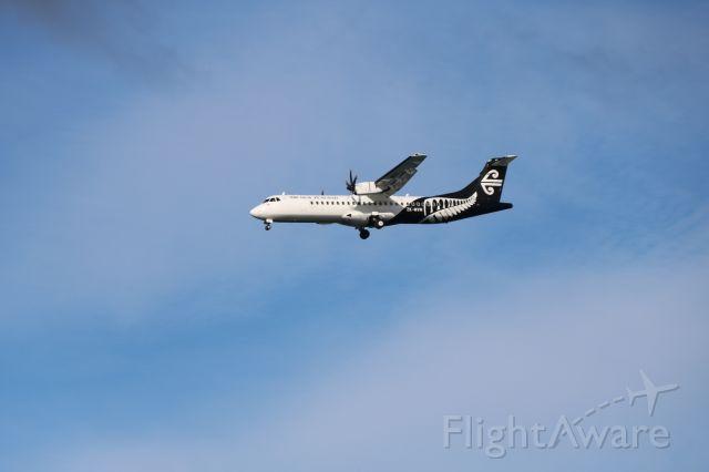 ZK-MVN — - First flight to NZQN after lockdown