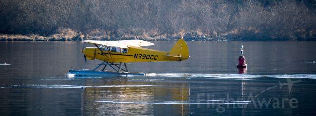 Piper L-21 Super Cub (N390CC) - Kenmore Air N390CC at the Kenmore Air Harbor taken from Logboom Park in Kenmore, WA, USA