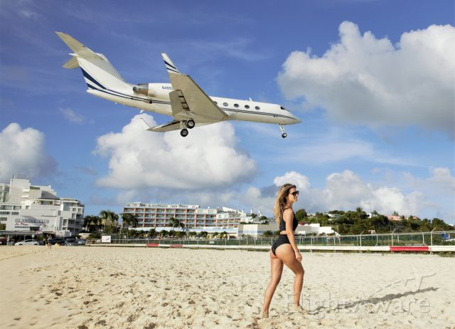 Gulfstream Aerospace Gulfstream IV (N455WG) - Girls and airplanes makes the day!