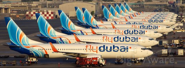 Boeing 737-800 (A6-FDU) - Busy morning at Dubais Terminal 2 as all of these Flydubai 737s get prepared to operate their next flights.br /br /Sidenote: This picture was taken WAY BEFORE A6-FDN was destroyed while flying as FZ981! Please do not point out the obvious in your comments because I already know!