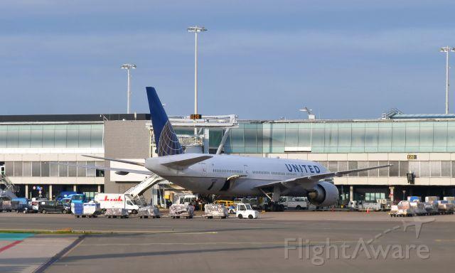 Boeing 777-200 (N77019) - United Airlines Boeing 777-224(ER) N77019 in Amsterdam