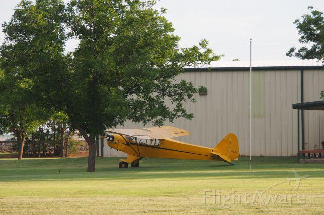 Piper L-18B Cub Special (N35317)