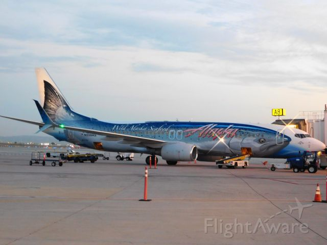 N559AS — - At the A gates  KSLC Sept 24 2015. Salmon Aircraft