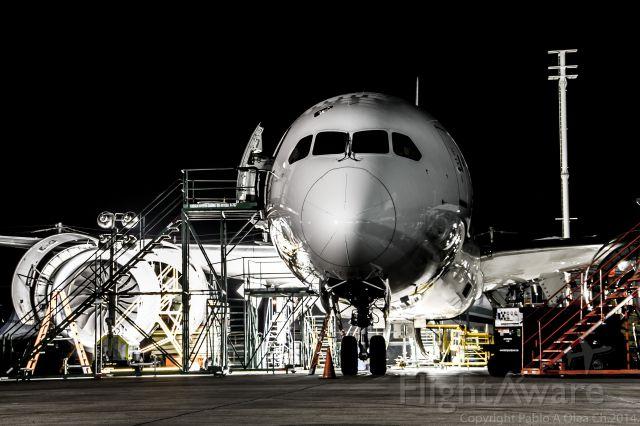 Boeing 787-8 (CC-BBB) - LAN MAINTENANCE BASE SANTIAGO, SCEL