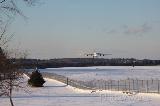 Antonov An-12 (RA-82045) - Big and Little--A Snowy Owl sits atop a fir tree alongside runway 15 at Bangor International Airport as an Antonov An-124 makes a landing.