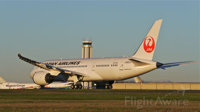 Boeing 787-8 (JA821J) - JAL8101 during its takeoff roll on Rwy 34L for its delivery flight to RJAA / NRT on 11/21/13. (LN:20 cn 34831).