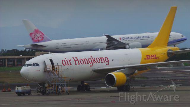Airbus A300F4-600 (B-LDM)
