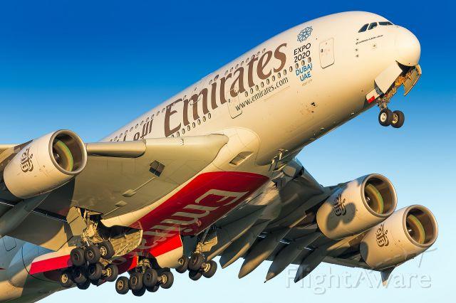 Airbus A380-800 (A6-EEA)