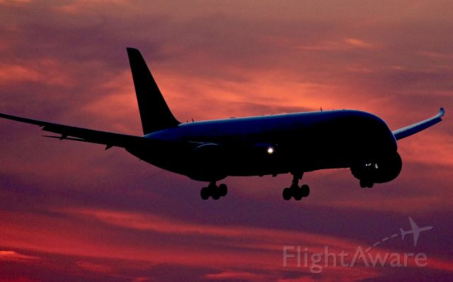 Boeing 787-8 — - This dusk photo of a British Airways 787-8 is, in my opinion, an eye-catcher.