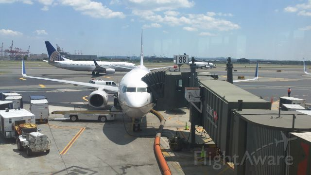 Boeing 737-800 — - United/Continental Airlines 737-800 at gate 88 at Newark. Getting ready for a departure to Vegas. :)
