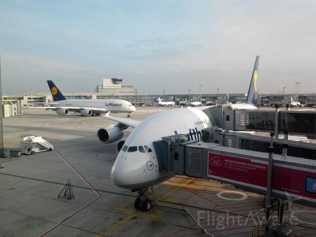 Airbus A380-800 (D-AIMB) - Lufthansa Airbus A-380s at Frankfurt Airport.