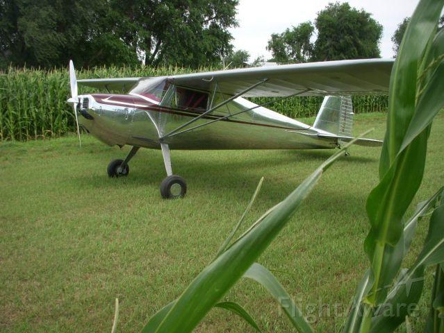 Cessna 120 (N76446) - Don Horst farm strip