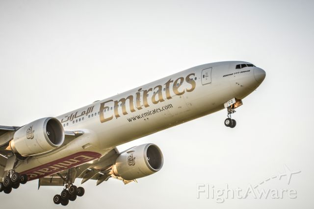 BOEING 777-300ER (A6-ECQ)
