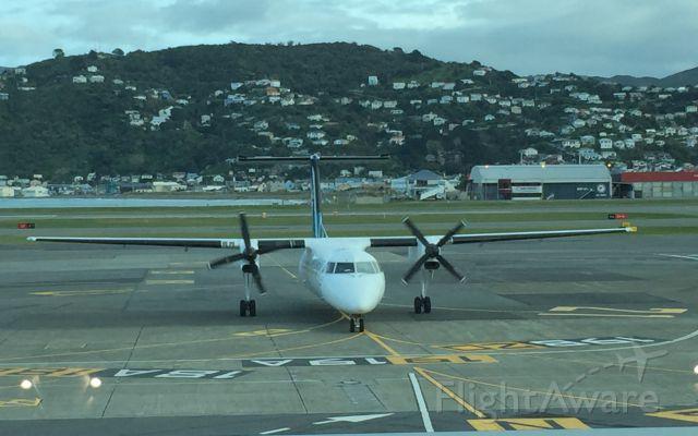 de Havilland Dash 8-300 (ZK-NET)