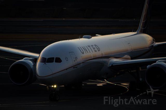 Boeing 787-9 Dreamliner (N29961)