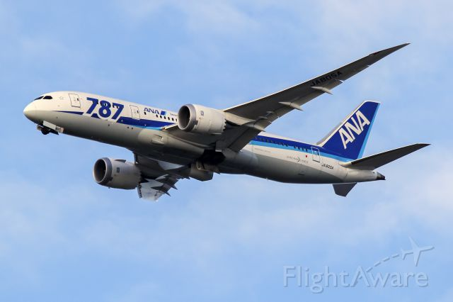 Boeing 787-8 (JA805A)