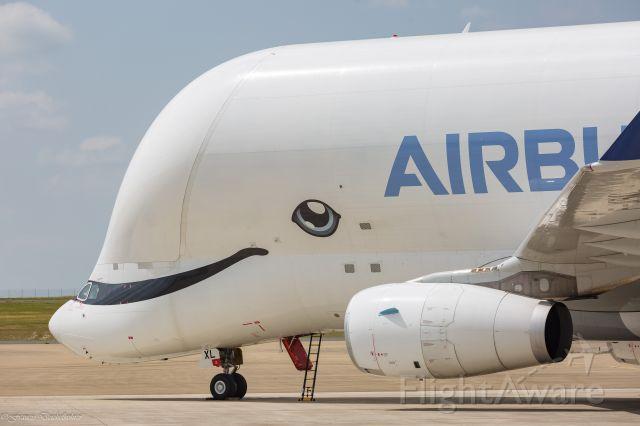AIRBUS A-330-700 Beluga XL (F-WBXL)