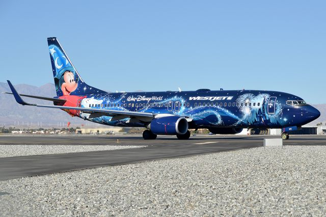 Boeing 737-800 (C-GWSZ) - Beautiful jet of Westjet!  This is my favorite special livery so far!  :)