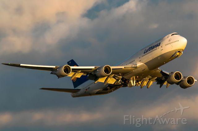 BOEING 747-8 (D-ABYU)