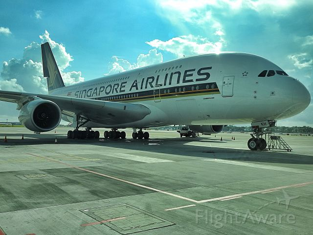 Airbus A380-800 — - Ramp side photo