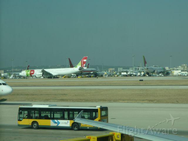 Airbus A330-300 (CS-TOO) - AEROPORTO DA PORTELA